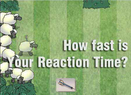 How fast is Your Reaction Time?