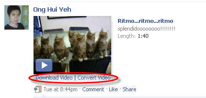 Download and Convert Videos in Facebook